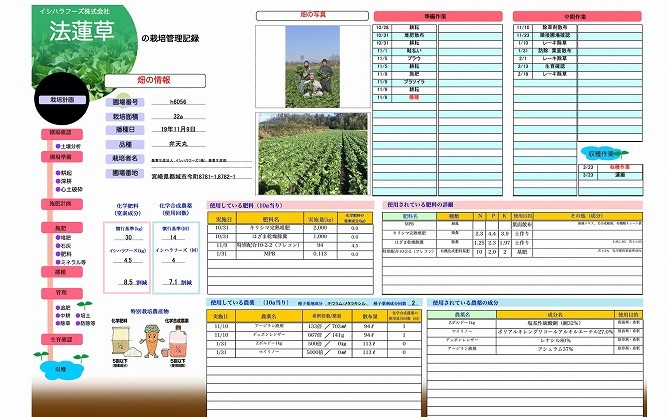 特別栽培宮崎のカットほうれん草300g 栽培管理記録